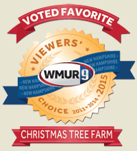 WMUR Viewers' Choice
